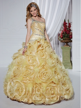 Discount 2013 House of Wu Quinceanera Dresses Style 26739