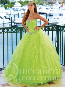 Discount 2014 House of Wu Quinceanera Dress Style HOWF008