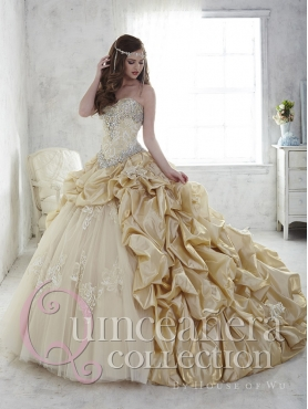 Discount New Style Applique and Bubble Champagne Quinceanera Gown in Tulle and Taffeta