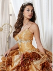 images/v/20120531/fiesta-quinceanera-dresses-style-56211-1.jpg