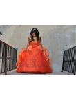 images/v/20130328/beading-sweetheart-orange-quinceanera-dress-0.jpg
