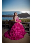 images/v/20130328/exquisite-beading-strapless-hot-pink-quinceanera-dress-3.jpg