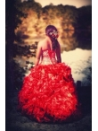 Discount Luxurious Ball Gown Red Strapless Quinceanera Dress
