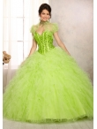 Discount 2014 Morilee Quinceanera Dresses Style MLER006