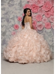images/v/20151105/affordable-organza-champagne-quinceanera-gown-with-beaded-bodice-and-bubbles-0.jpg