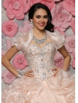 images/v/20151105/affordable-organza-champagne-quinceanera-gown-with-beaded-bodice-and-bubbles-1.jpg